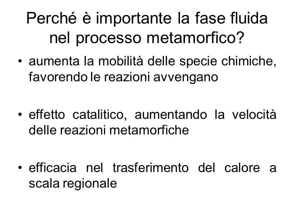Perché è importante la fase fluida nel processo metamorfico