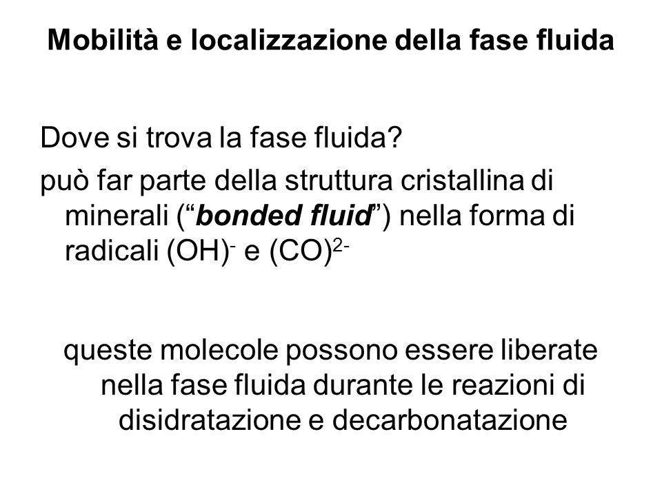Mobilità e localizzazione della fase fluida