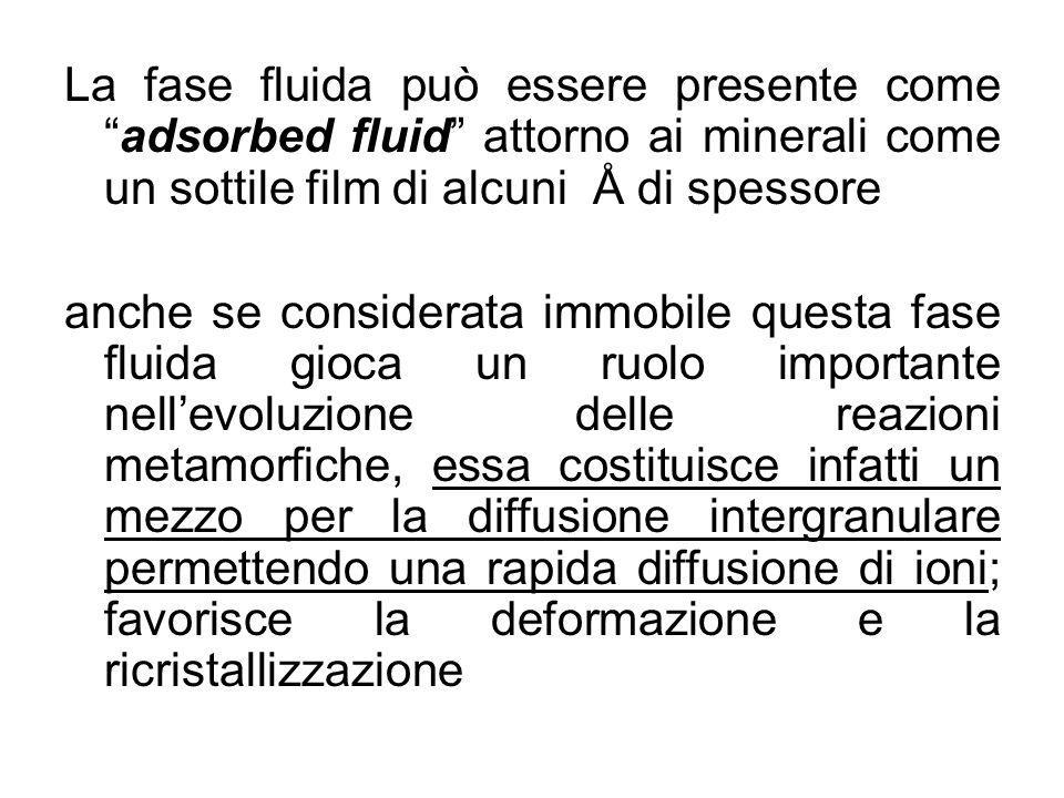 La fase fluida può essere presente come adsorbed fluid attorno ai minerali come un sottile film di alcuni Å di spessore