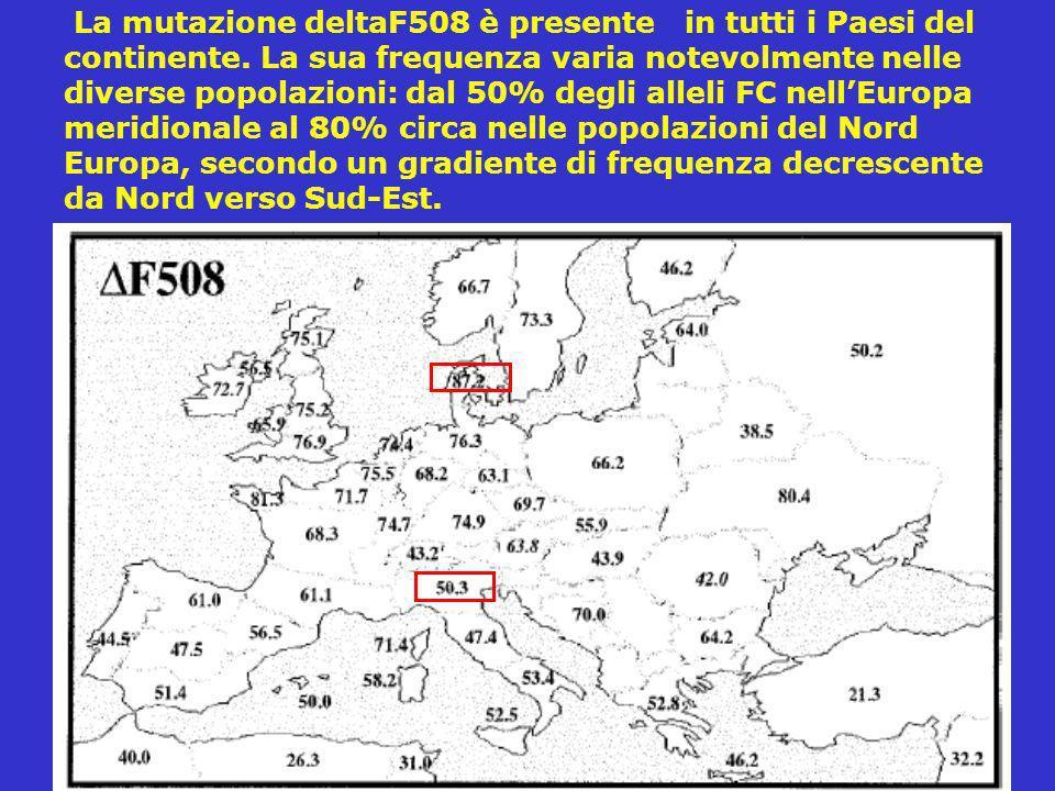 La mutazione deltaF508 è presente in tutti i Paesi del continente