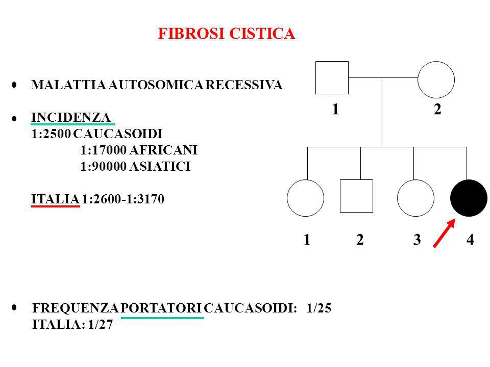 FIBROSI CISTICA 1 2 1 2 3 4 MALATTIA AUTOSOMICA RECESSIVA INCIDENZA