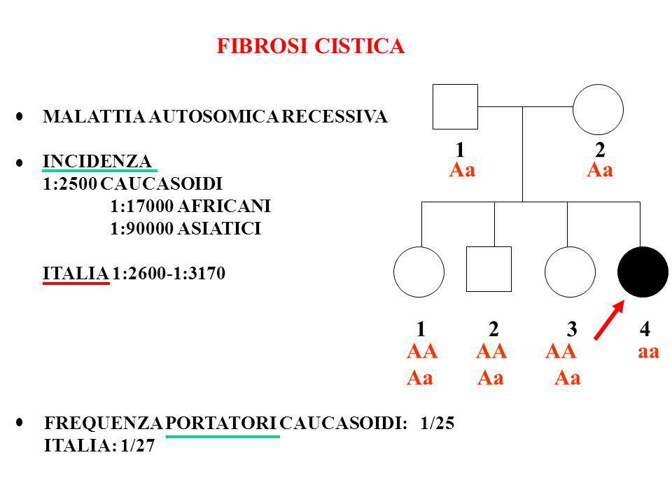 FIBROSI CISTICA 1 2 Aa Aa 1 2 3 4 AA AA AA Aa Aa Aa aa