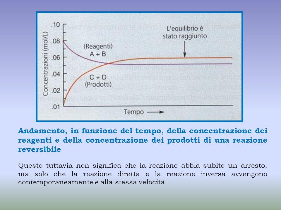 Andamento, in funzione del tempo, della concentrazione dei reagenti e della concentrazione dei prodotti di una reazione reversibile