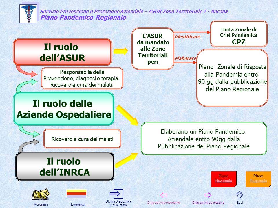 Il ruolo dell'ASUR Il ruolo delle Aziende Ospedaliere Il ruolo