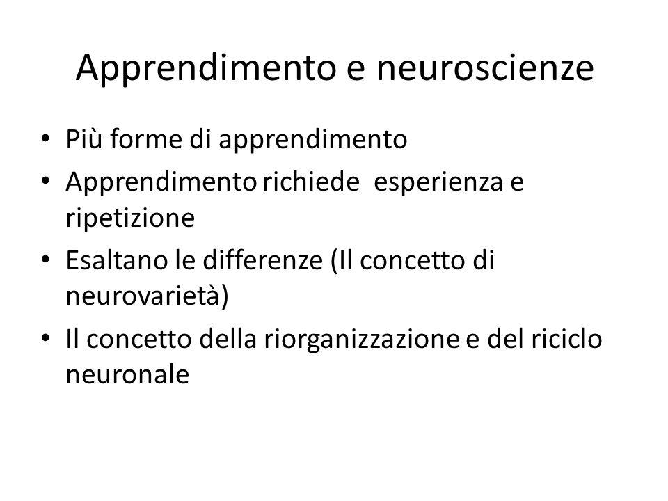 Apprendimento e neuroscienze
