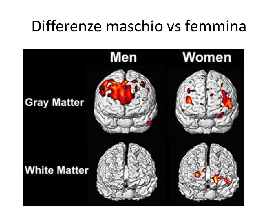 Differenze maschio vs femmina