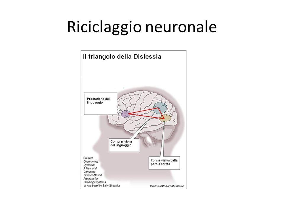 Riciclaggio neuronale