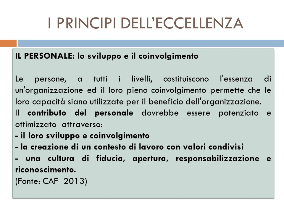 I PRINCIPI DELL'ECCELLENZA
