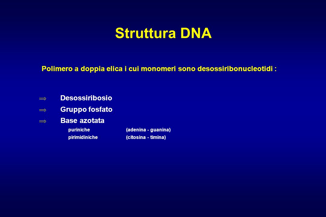 Struttura DNAPolimero a doppia elica i cui monomeri sono desossiribonucleotidi : Desossiribosio. Gruppo fosfato.