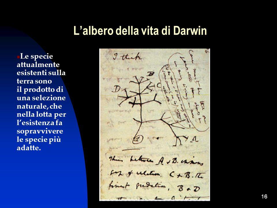 L'albero della vita di Darwin