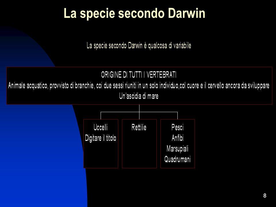 La specie secondo Darwin