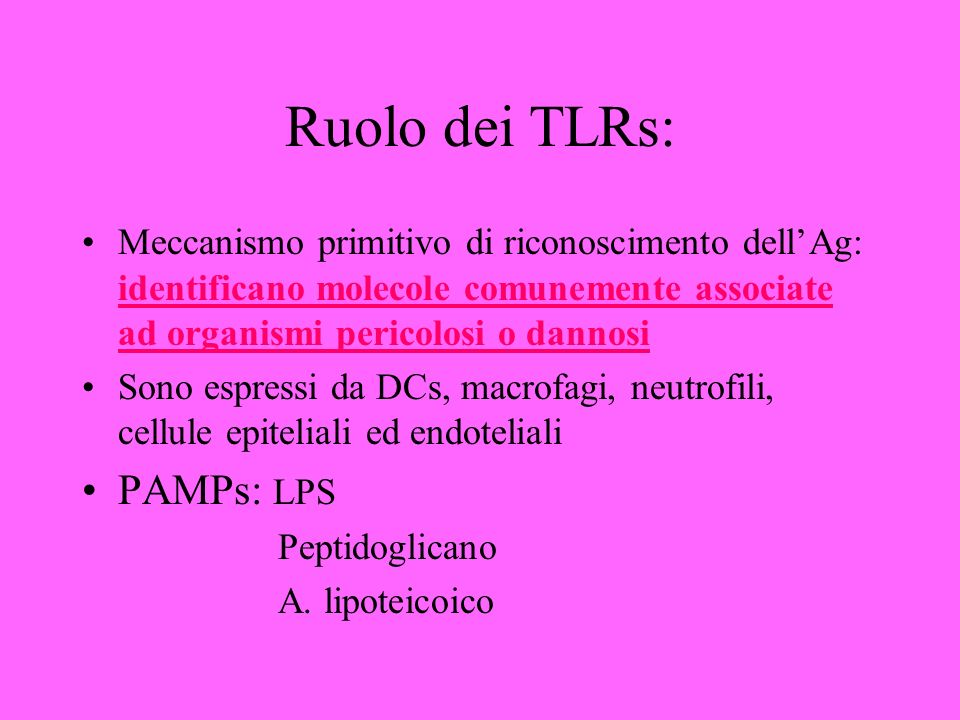 Ruolo dei TLRs: PAMPs: LPS