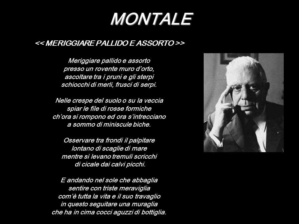 << MERIGGIARE PALLIDO E ASSORTO >>