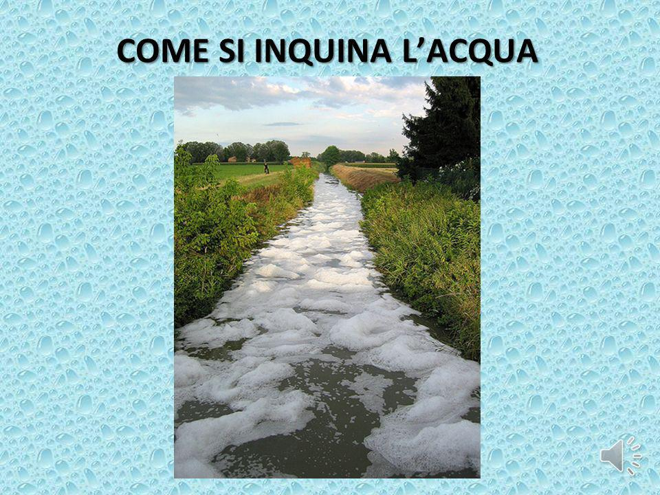 COME SI INQUINA L'ACQUA