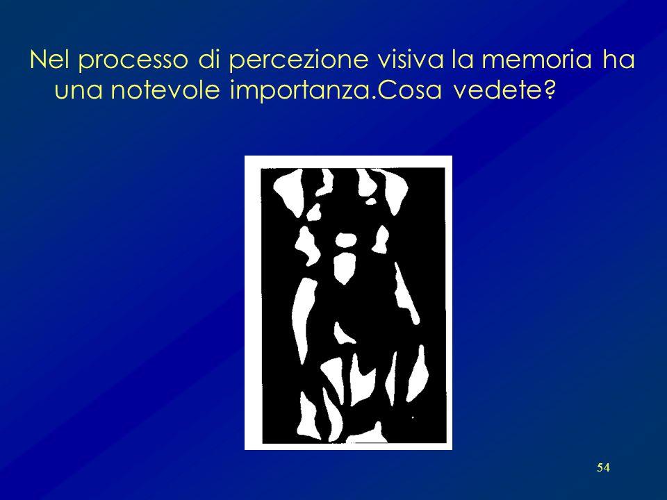 Nel processo di percezione visiva la memoria ha una notevole importanza.Cosa vedete