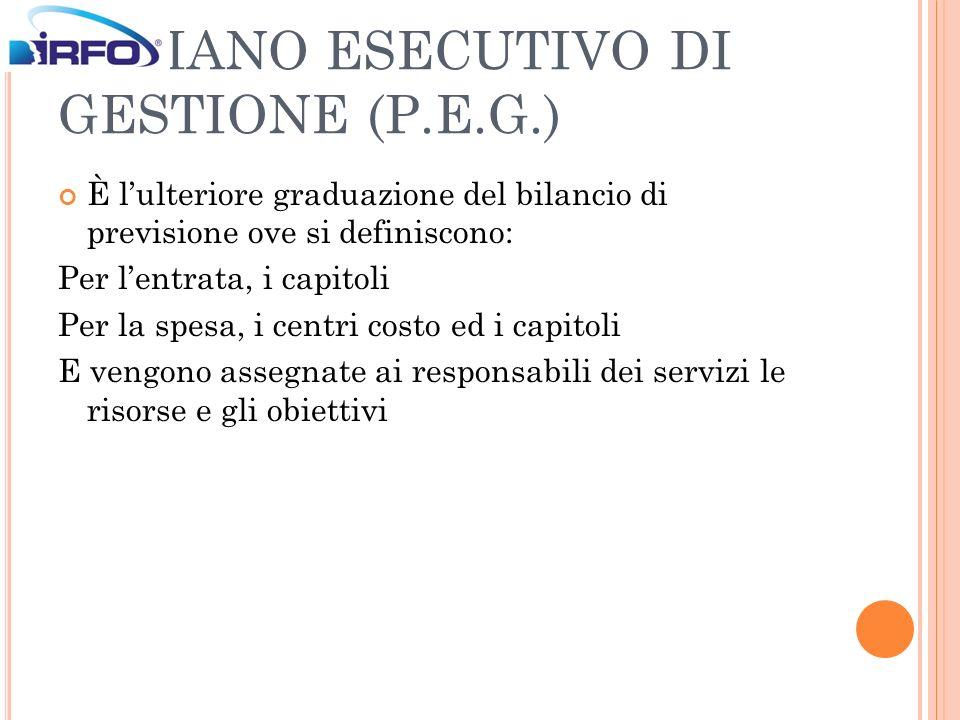 IL PIANO ESECUTIVO DI GESTIONE (P.E.G.)