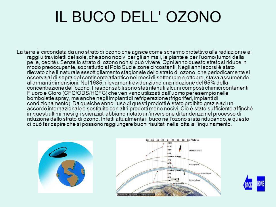 IL BUCO DELL OZONO