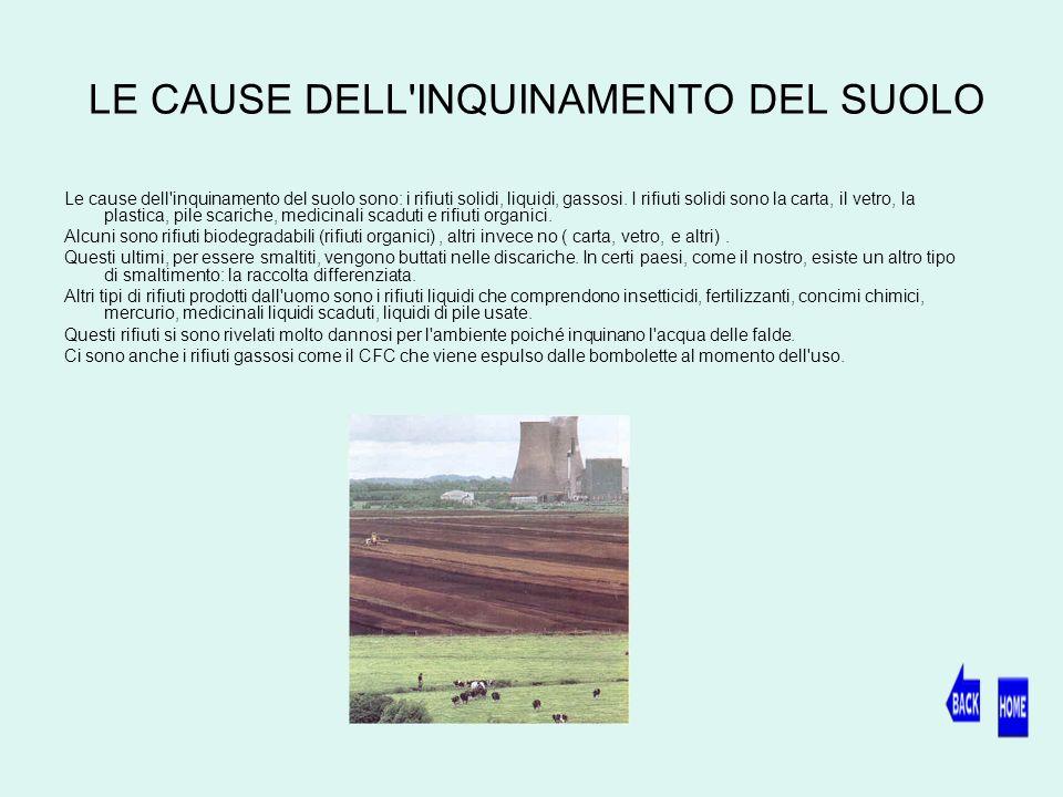LE CAUSE DELL INQUINAMENTO DEL SUOLO
