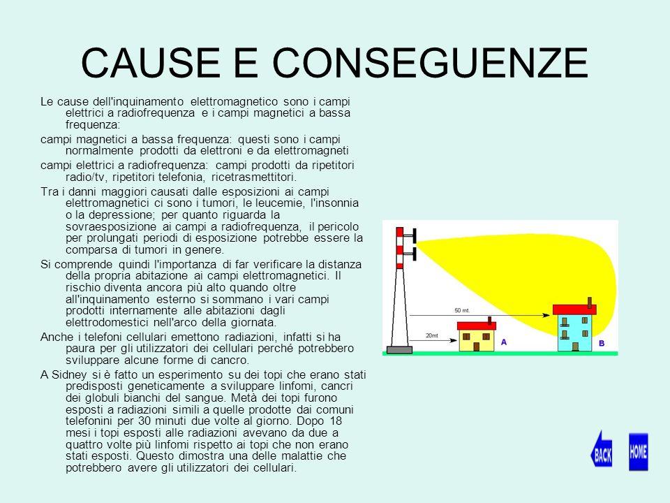 CAUSE E CONSEGUENZE Le cause dell inquinamento elettromagnetico sono i campi elettrici a radiofrequenza e i campi magnetici a bassa frequenza: