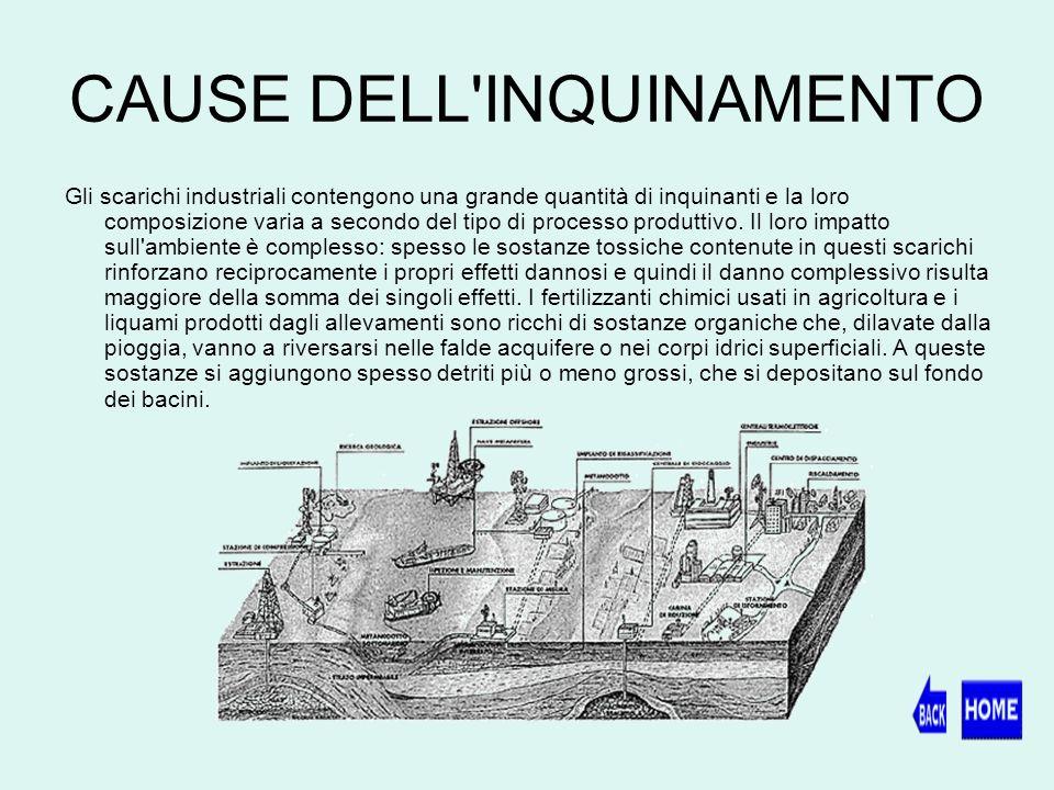 CAUSE DELL INQUINAMENTO