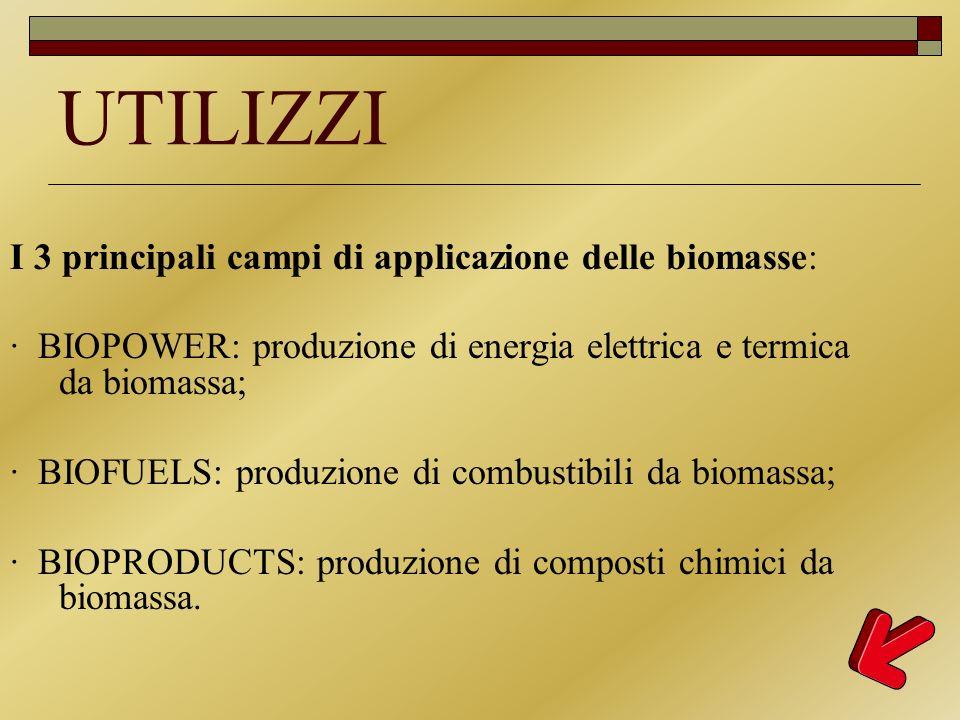 UTILIZZI I 3 principali campi di applicazione delle biomasse: