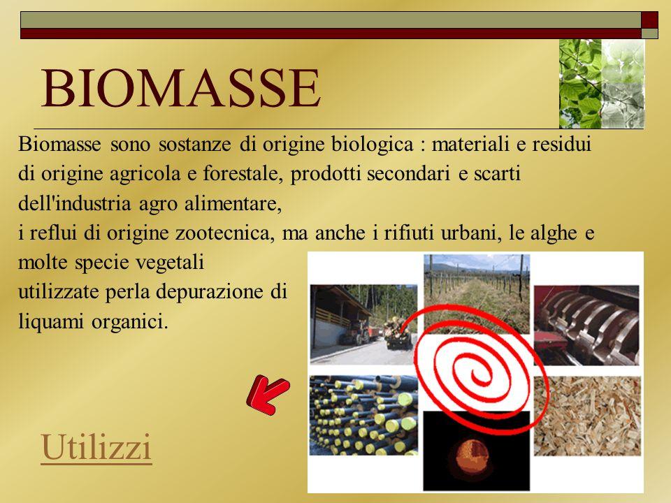 BIOMASSE Biomasse sono sostanze di origine biologica : materiali e residui. di origine agricola e forestale, prodotti secondari e scarti.