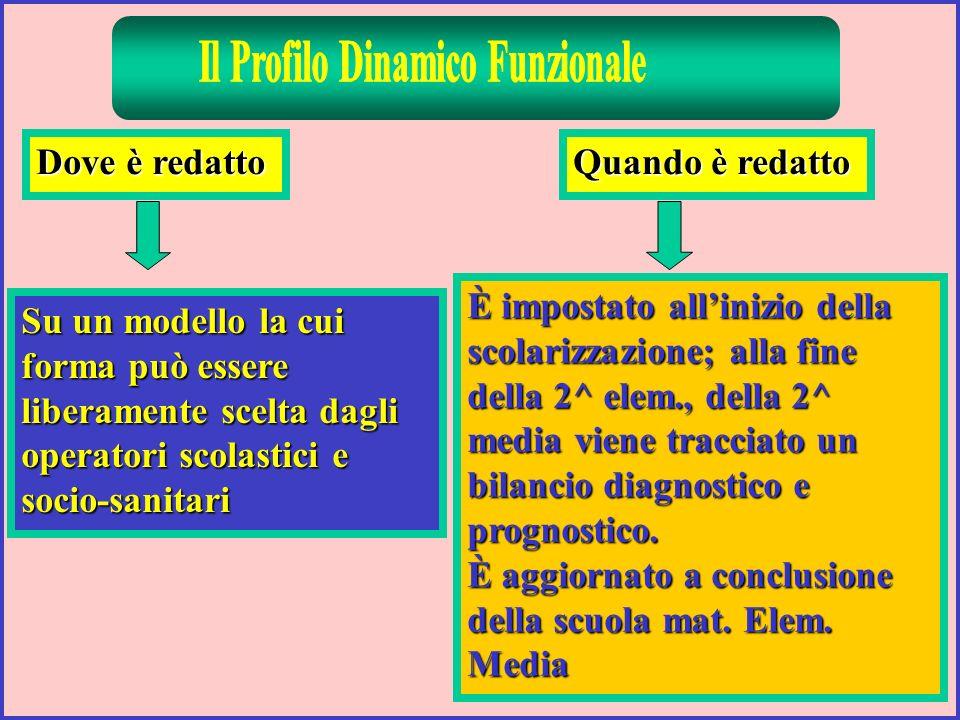 Il Profilo Dinamico Funzionale