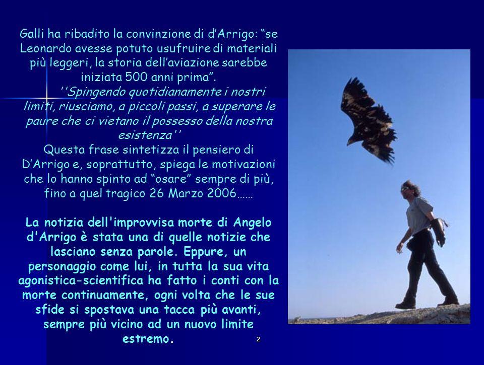 Galli ha ribadito la convinzione di d'Arrigo: se Leonardo avesse potuto usufruire di materiali più leggeri, la storia dell'aviazione sarebbe iniziata 500 anni prima .