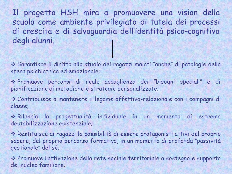 Il progetto HSH mira a promuovere una vision della scuola come ambiente privilegiato di tutela dei processi di crescita e di salvaguardia dell'identità psico-cognitiva degli alunni.