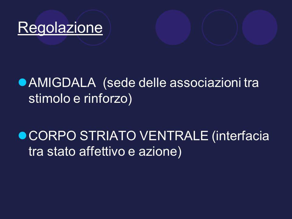 Regolazione AMIGDALA (sede delle associazioni tra stimolo e rinforzo)