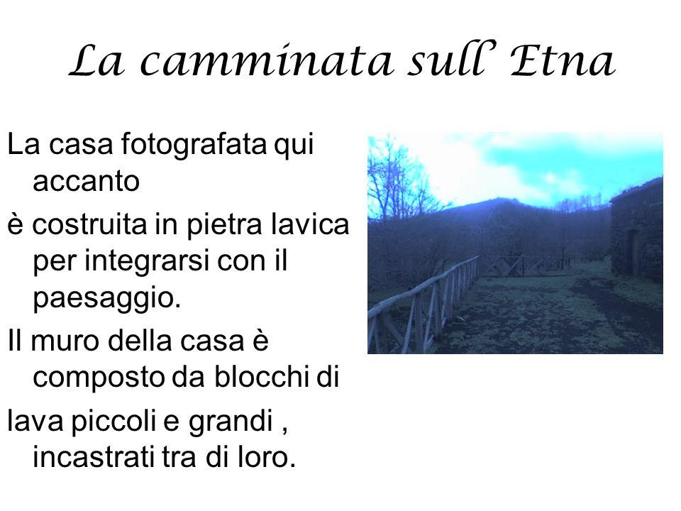 La camminata sull' Etna