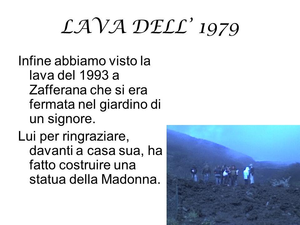 LAVA DELL' 1979 Infine abbiamo visto la lava del 1993 a Zafferana che si era fermata nel giardino di un signore.
