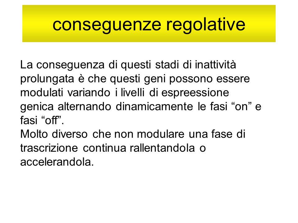 conseguenze regolative