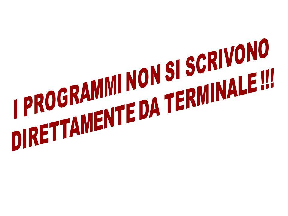 I PROGRAMMI NON SI SCRIVONO DIRETTAMENTE DA TERMINALE !!!