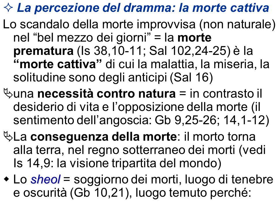 La percezione del dramma: la morte cattiva