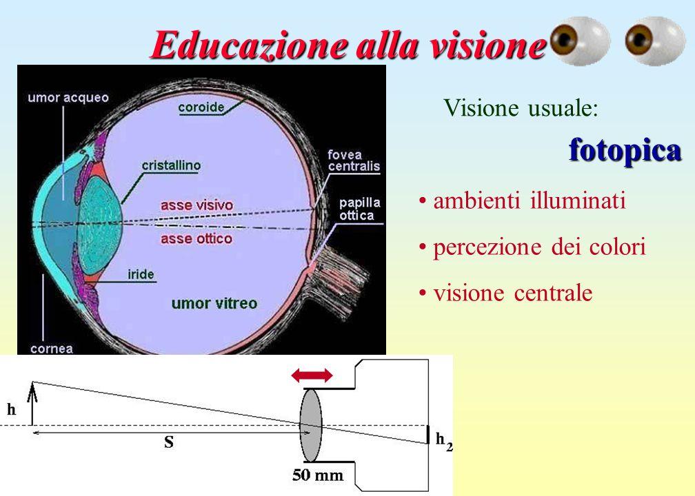 Educazione alla visione