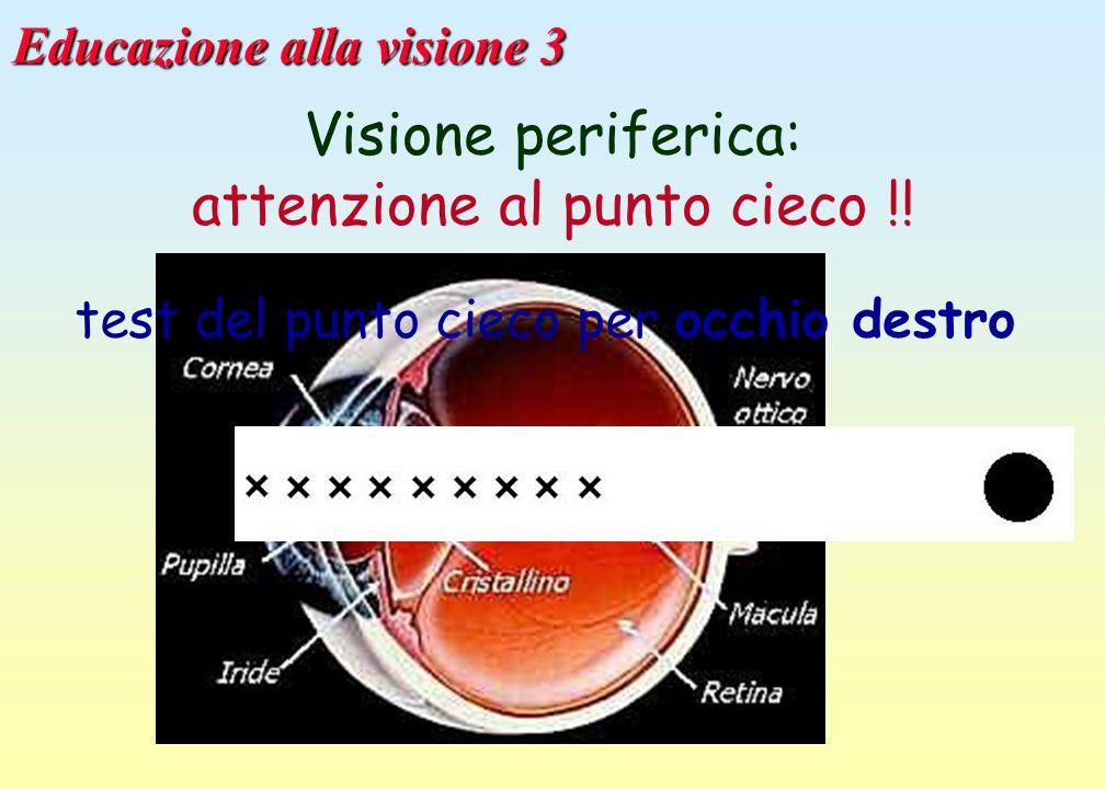 Educazione alla visione 3