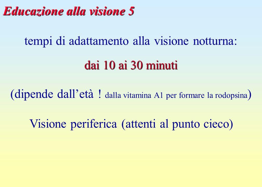 Educazione alla visione 5
