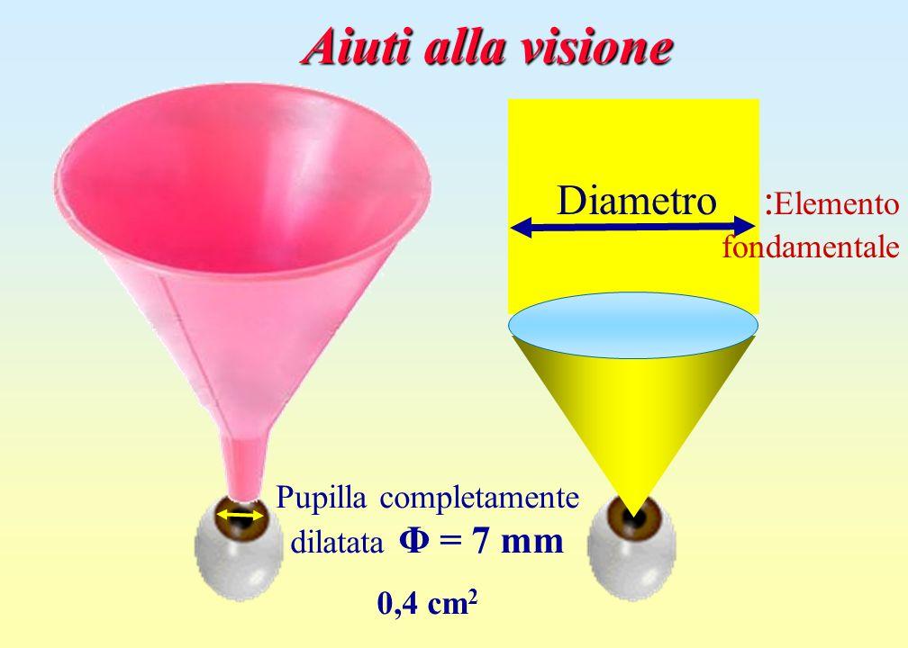 Pupilla completamente dilatata Φ = 7 mm