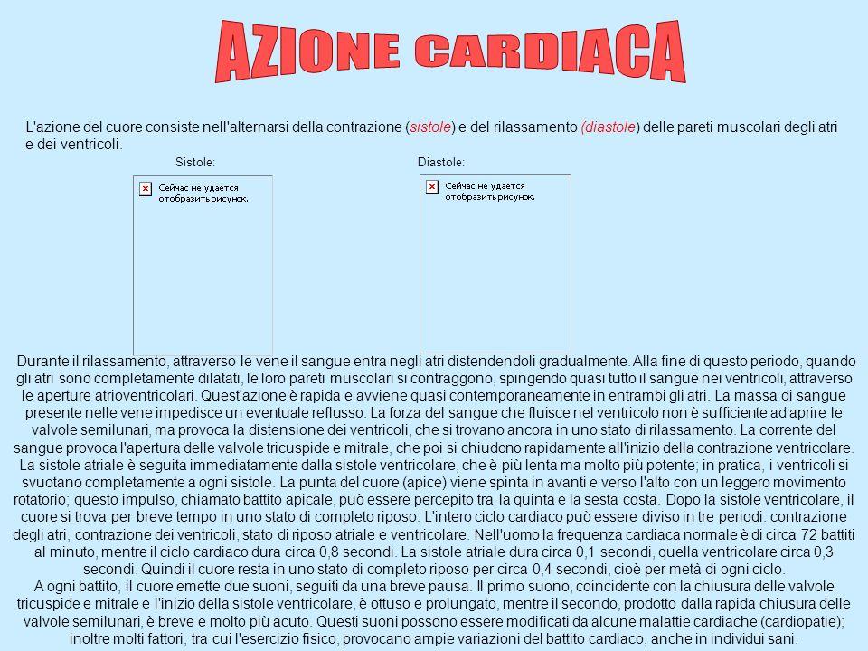 AZIONE CARDIACA
