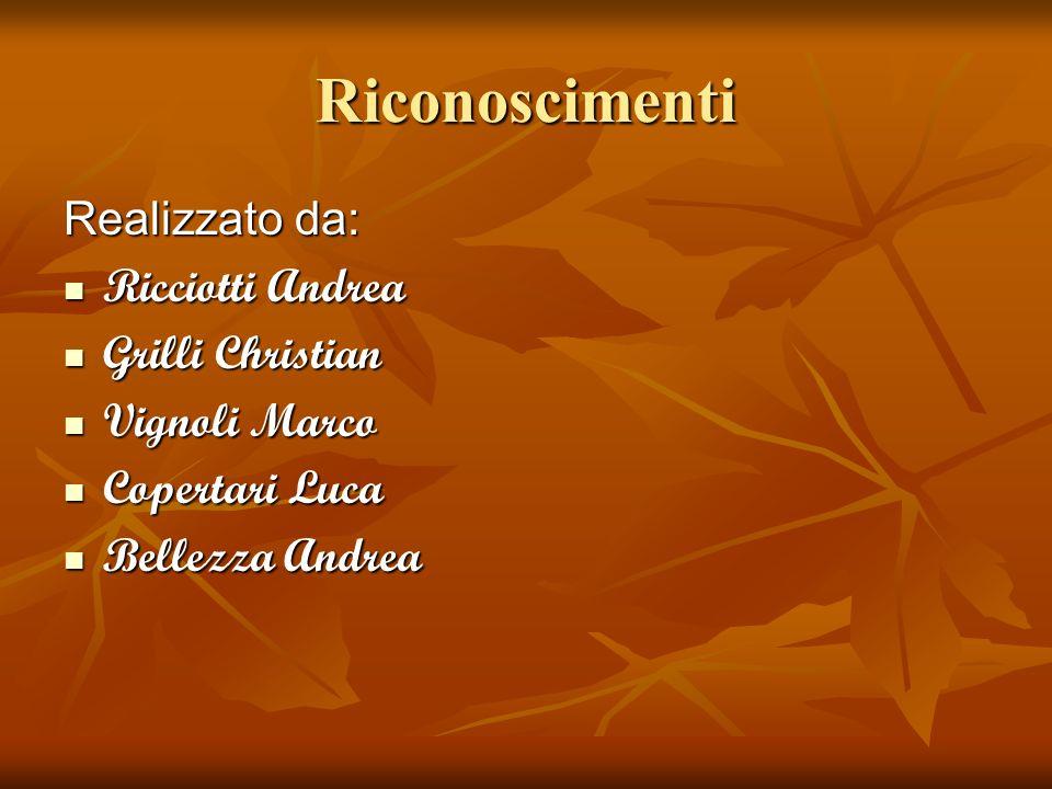 Riconoscimenti Realizzato da: Ricciotti Andrea Grilli Christian