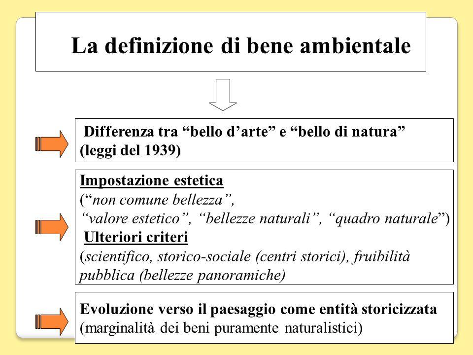La definizione di bene ambientale
