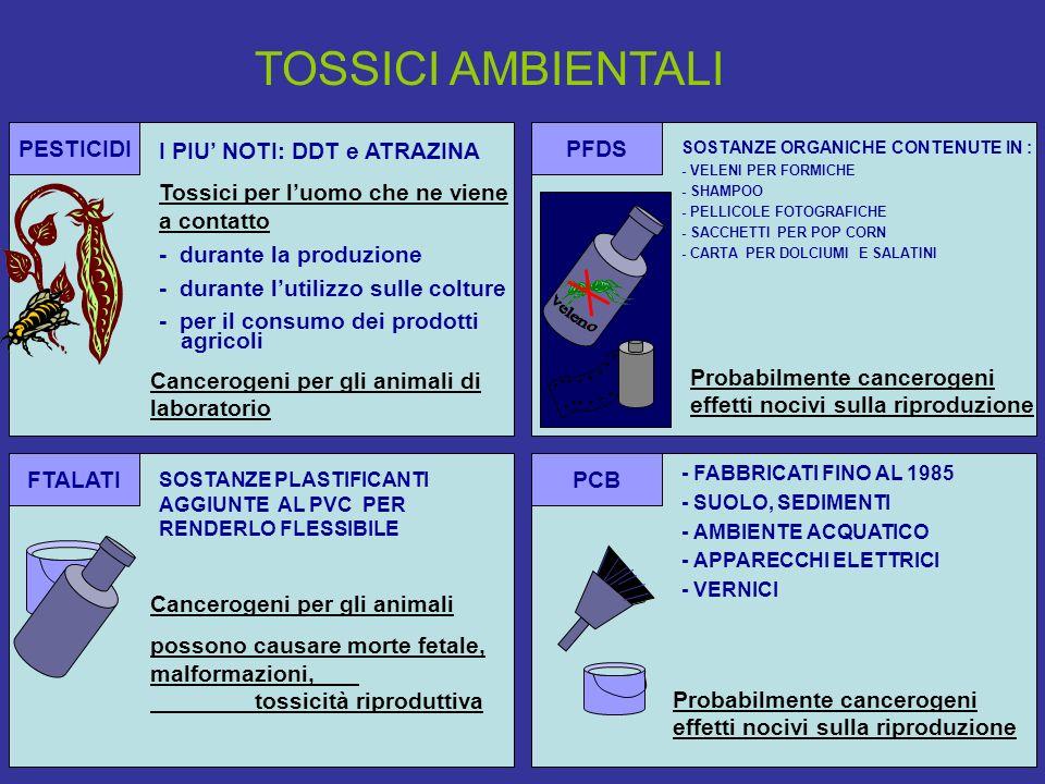 TOSSICI AMBIENTALI PESTICIDI I PIU' NOTI: DDT e ATRAZINA