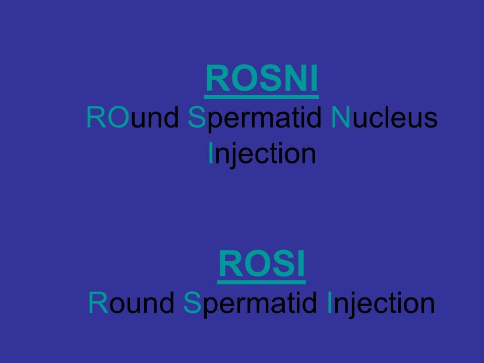 ROSNI ROund Spermatid Nucleus Injection ROSI Round Spermatid Injection