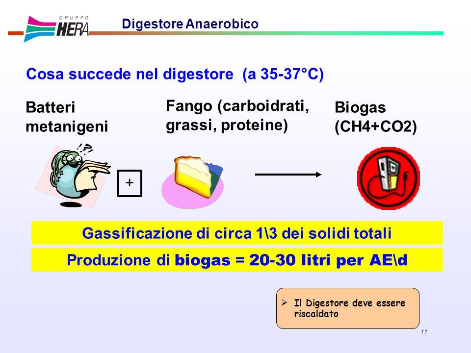 Gassificazione di circa 1\3 dei solidi totali