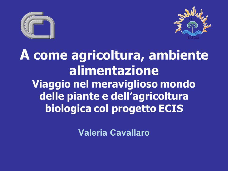 A come agricoltura, ambiente alimentazione Viaggio nel meraviglioso mondo delle piante e dell'agricoltura biologica col progetto ECIS