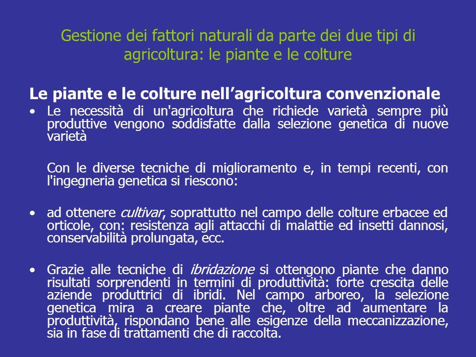 Le piante e le colture nell'agricoltura convenzionale