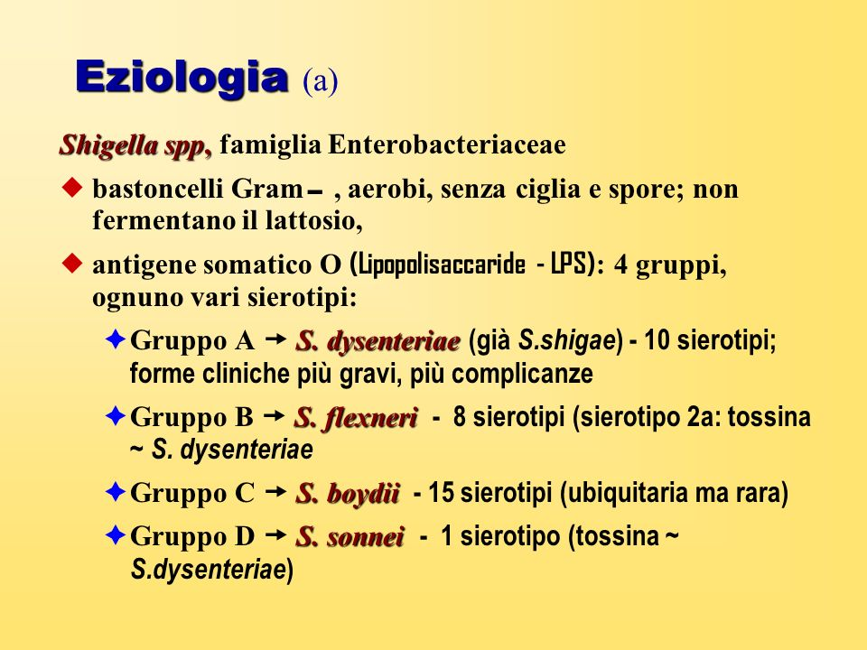 Eziologia (a) Shigella spp, famiglia Enterobacteriaceae