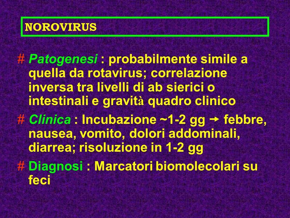 Diagnosi : Marcatori biomolecolari su feci