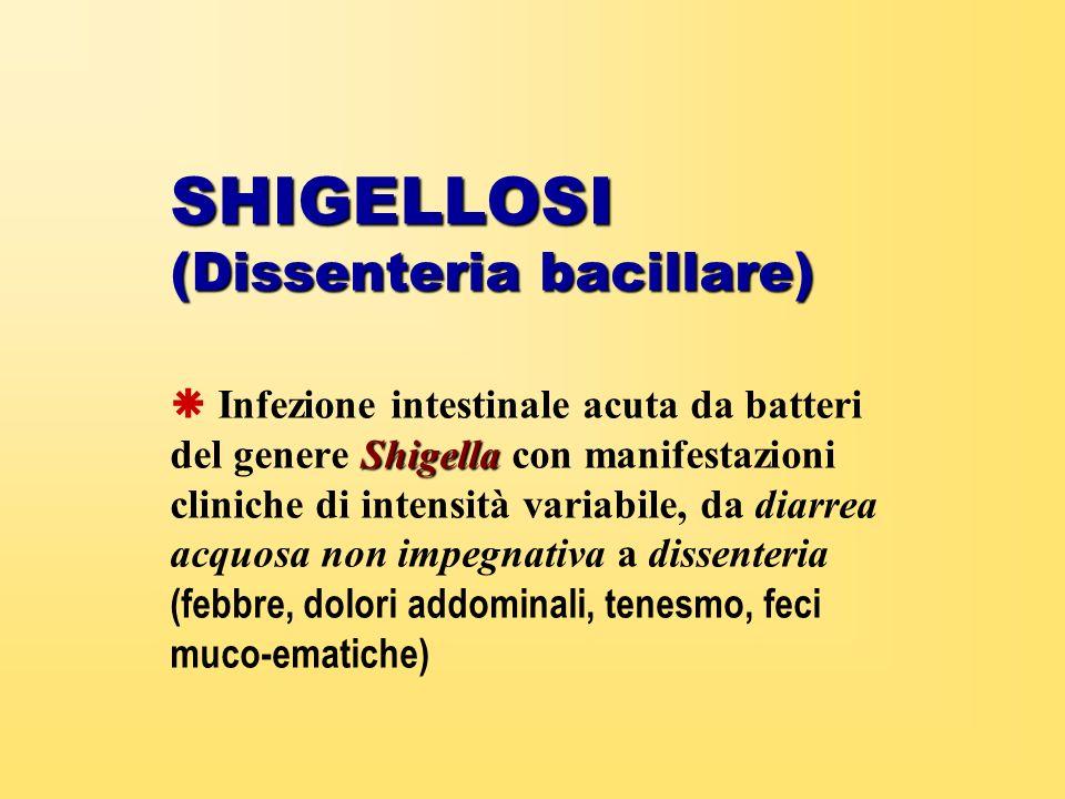 SHIGELLOSI (Dissenteria bacillare)
